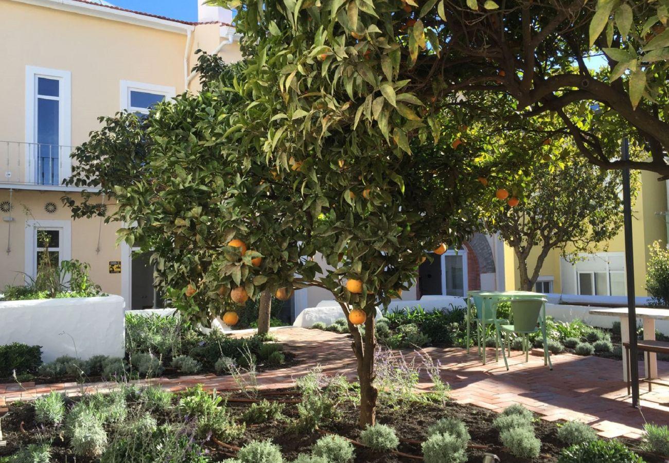 Appartement à Lisbonne - Garden Quiet and Cool Apartment 27 by Lisbonne Collection