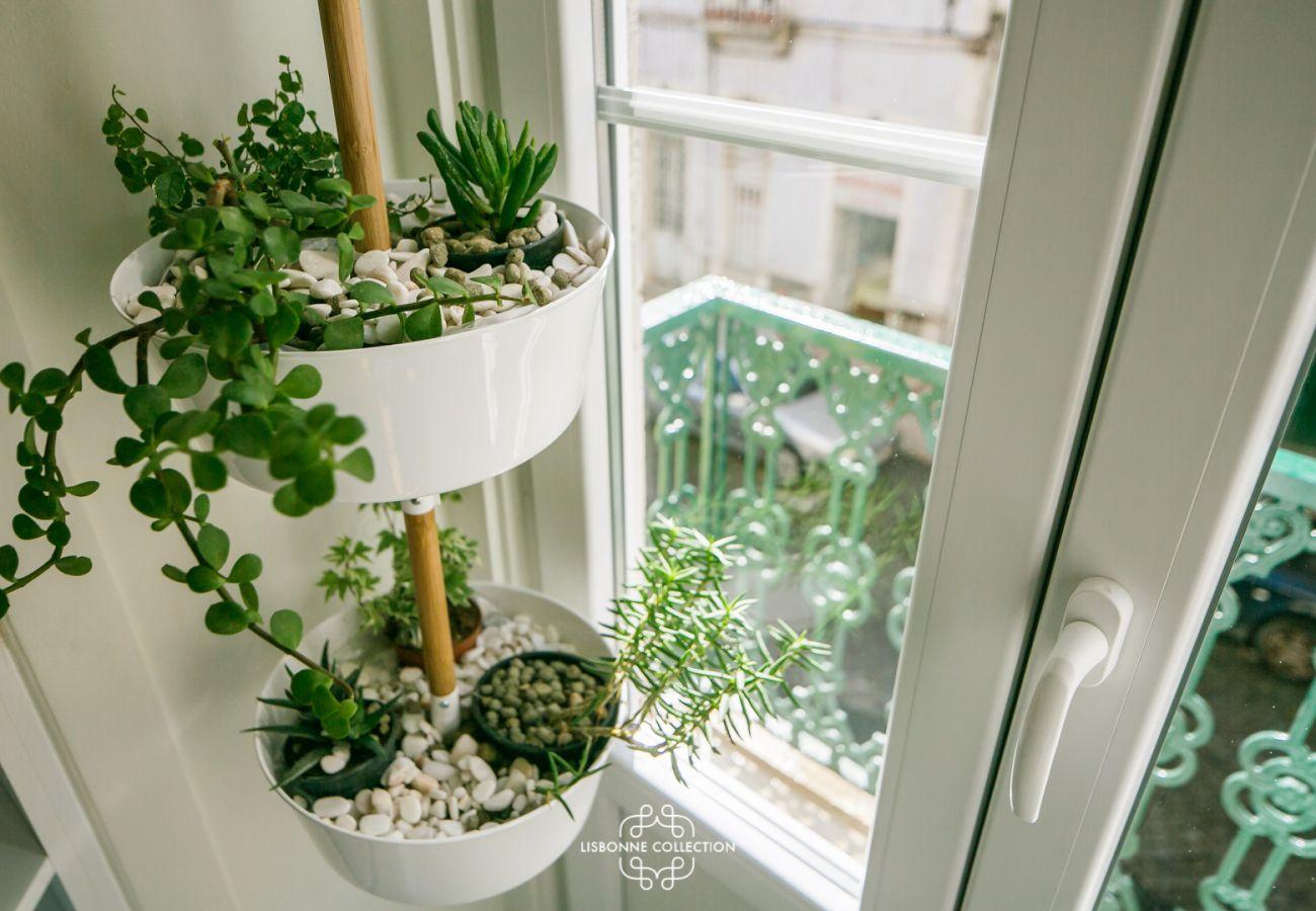 mini potager suspendu  à coté du balcon de la cuisine